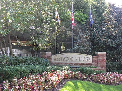 Tucked away in Tysons Corner - Westwood Village condos